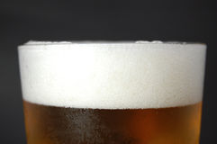 De close-up van het bier Stock Foto