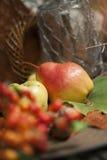 De close-up van het de herfstfruit Stock Foto's