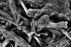 De Close-up van het drijfhout Stock Fotografie