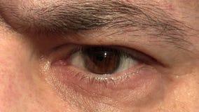 De close-up van het mensenoog stock video