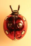 De Close-up van het onzelieveheersbeestje Royalty-vrije Stock Fotografie