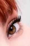 De close-up van het oog royalty-vrije stock afbeeldingen