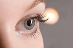 De close-up van het oog stock foto