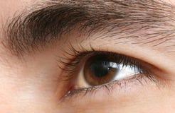 De close-up van het oog stock fotografie