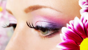 De close-up van het oog met make-up. Stock Afbeeldingen