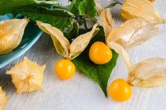 De close-up van het Physalisfruit Stock Foto's