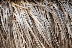De close-up van met stro bedekt dakachtergrond Stock Afbeeldingen
