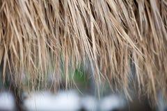 De close-up van met stro bedekt dakachtergrond Royalty-vrije Stock Afbeelding