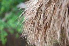 De close-up van met stro bedekt dakachtergrond Royalty-vrije Stock Afbeeldingen