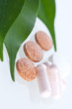 De close-up van pillen op het blad Royalty-vrije Stock Afbeeldingen