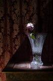 De close-up van vernietigde en droge roze en geel nam bloemblaadjes op zwarte toe Royalty-vrije Stock Foto