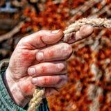 De close-up van de werkende tuinman van de mensen` s hand houdt de kabel De mannelijke hand is calloused en kneuste gekleurd Stock Afbeelding