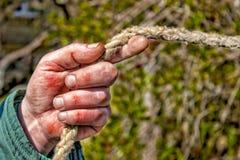 De close-up van de werkende tuinman van de mensen` s hand houdt de kabel De mannelijke hand is calloused en kneuste gekleurd Royalty-vrije Stock Foto