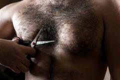 De close-upmens met schaar snijdt het haar op zijn harige borst stock fotografie