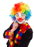 De clown met wit grappig blind stelt zonnebril in de schaduw Royalty-vrije Stock Foto