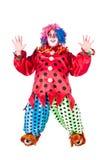 De clown van de vakantie Stock Fotografie