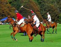 De Club van Nieuwpoort Polo Club v. Tiverton Polo Stock Afbeeldingen