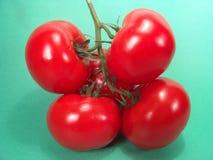 De Cluster van de tomaat Stock Foto