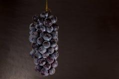 De cluster van druiven Stock Afbeeldingen