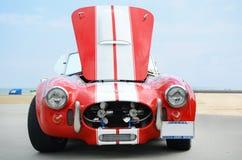 De Cobra van Shelby Royalty-vrije Stock Afbeelding