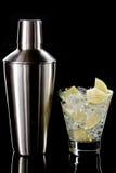 De cocktail en de Schudbeker van martini Stock Fotografie