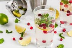 De cocktail van Amerikaanse veenbesmojito Royalty-vrije Stock Afbeeldingen