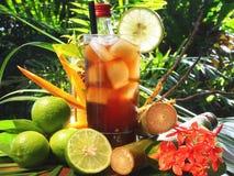 De Cocktail van Cuba Libre op Tropische Achtergrond stock fotografie