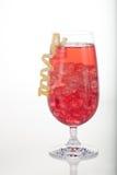 De Cocktail van de Amerikaanse veenbes van de winter Royalty-vrije Stock Foto's