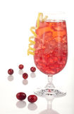 De Cocktail van de Amerikaanse veenbes van de winter Royalty-vrije Stock Afbeeldingen