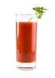 De Cocktail van de bloody mary stock fotografie