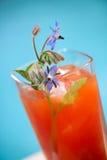 De cocktail van de bloody mary Royalty-vrije Stock Fotografie