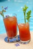 De cocktail van de bloody mary Stock Afbeelding