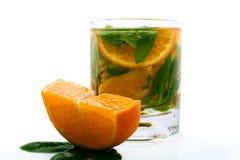 De cocktail van de citrusvrucht met munt Royalty-vrije Stock Afbeeldingen