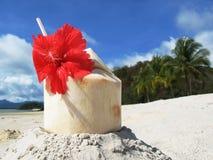 De cocktail van de kokosnoot Stock Foto's