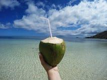 De cocktail van de kokosnoot op het strand Royalty-vrije Stock Afbeeldingen