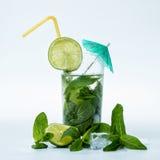 De cocktail van Mohito Royalty-vrije Stock Fotografie