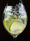 De cocktail van Mojito Stock Afbeeldingen