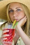 De Cocktails van de zomer Stock Fotografie