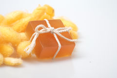 De cocon en de honingszepen van de glycerinezijderups Royalty-vrije Stock Foto's