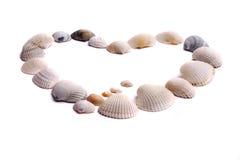 de coeur seashells à l'extérieur Photographie stock libre de droits