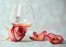 De cognac en nam toe stock afbeelding