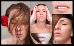 De collage van de make-up royalty-vrije stock foto's