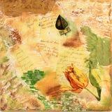 De collage van de tulp stock foto's
