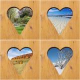 De collage van de vier seizoenen stock afbeeldingen