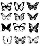 De collage van de vlinder Stock Foto