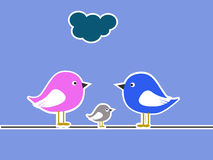 De collage van de vogelfamilie Stock Foto's