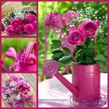 De collage van de zomerbloemen Royalty-vrije Stock Foto's