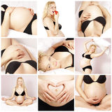 De collage van de zwangerschap Stock Afbeeldingen