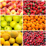 De collage van het fruit Stock Afbeelding