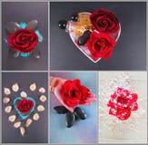 De collage van het kuuroord Royalty-vrije Stock Foto's